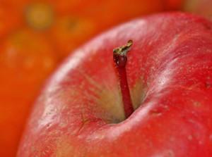 apple-1081105_1920